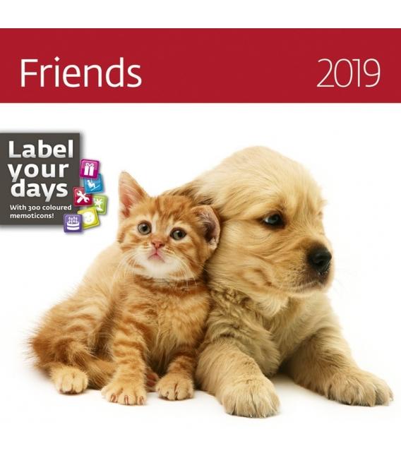 Kalendár nástenný FRIENDS 2019