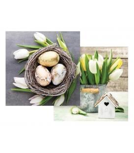 Servítky veľkonočné 33x33cm, vzor tulipán, 20 kusov, 3 vrstvové