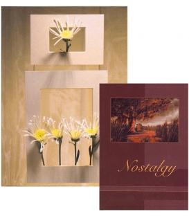 Záznamová kniha 4104 R A4 100 lis.