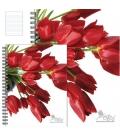 Blok 15084/6b TW Tulipán