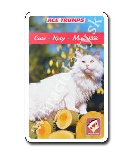 Hracie karty kvarteto - mačky